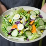 Vegetarian Atkins Diet Review